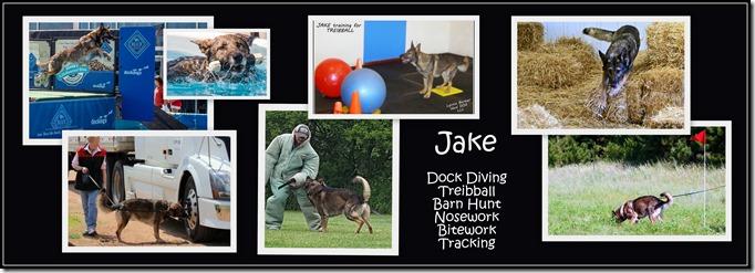 2016.8 Jake's Sports