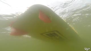 vlcsnap-2015-06-24-21h16m32s163