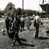 1950-fauchage-II.jpg
