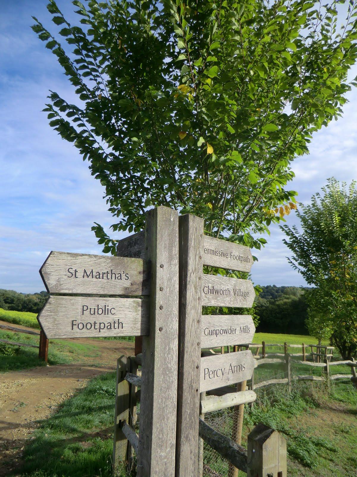 CIMG8771 A helpful signpost
