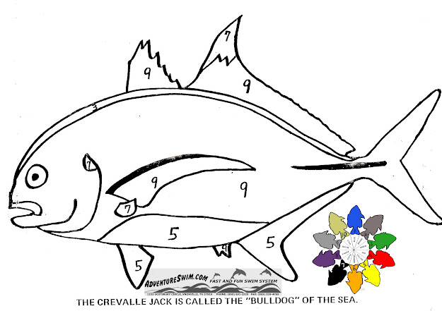 Adventure Swim Fish Coloring Pages  Cartoon Baby Fish Coloring  Pages