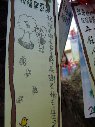 五福公園老樹祈福卡