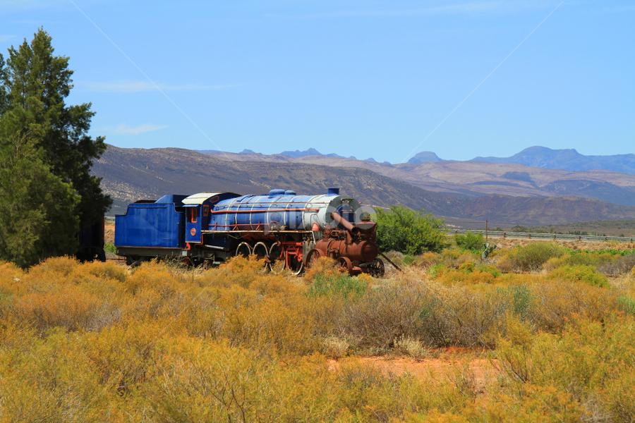 Historical  by Dietmar Pohlmann - Transportation Trains ( old, transport, train, historical, africa )