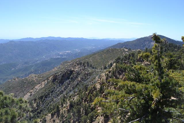Reyes Peak from Haddock Peak