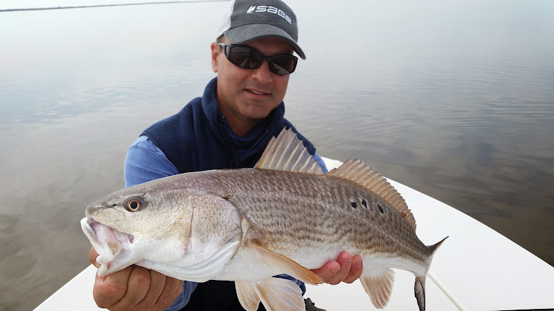Big Red Golden Isles Fly Fishing