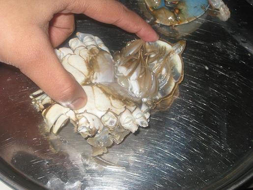 preparing crab