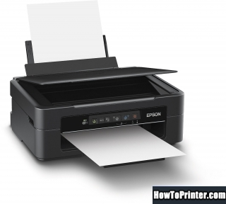 Reset Epson XP-215 printer Waste Ink Pads Counter