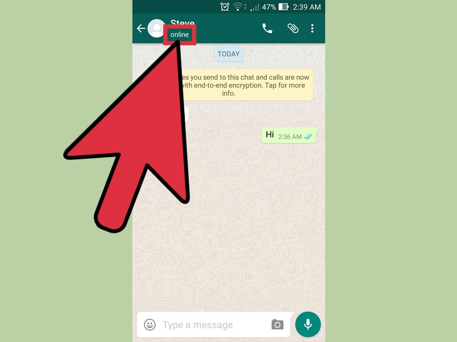 Cara Mematikan Status Online di WhatsApp
