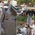 Pescador 'briga' por 20 minutos para fisgar pintado de 60 quilos