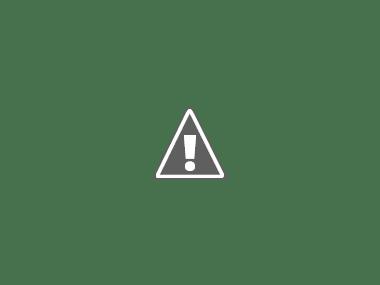 """Tra estro e invenzione: la """"Prima volta"""" del Genovesino a Cremona"""