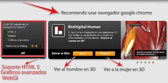 El cuerpo humano en 3D