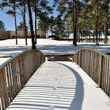 UACCH Snow Day 2011 - DSC_0023.JPG