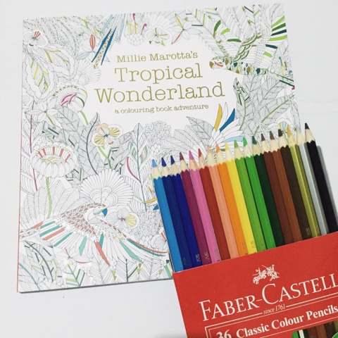 I Am Far From Being An Artist But Just Cant Say No To This Adult Coloring Book First Learned It A Local Celebrity That Ive Been Following On