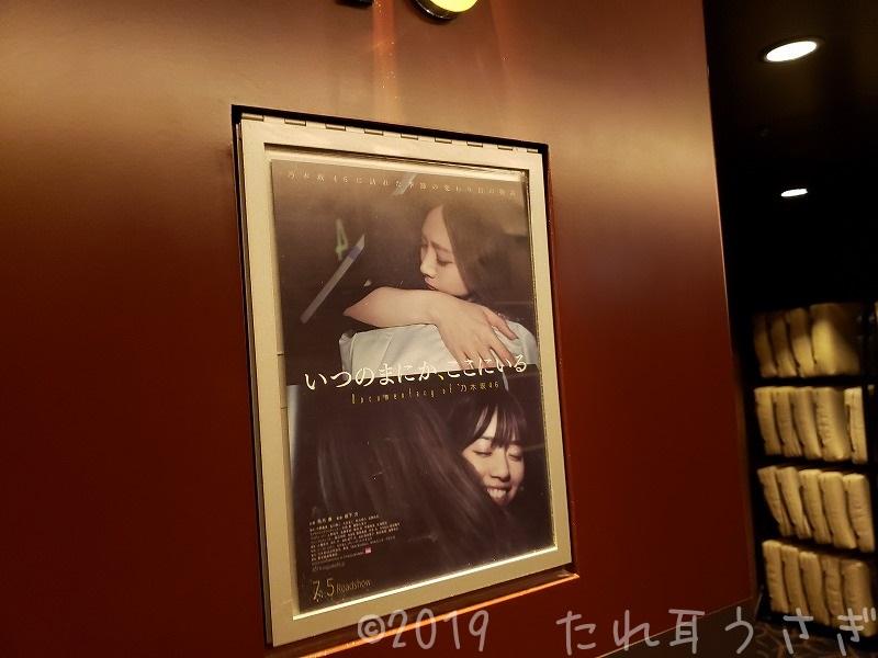 乃木坂46 映画のネタバレ・感想・面白くない「いつのまにか、ここにいる Documentary of 乃木坂46」を見てきたのでレビュー