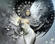 One Wing Beauty