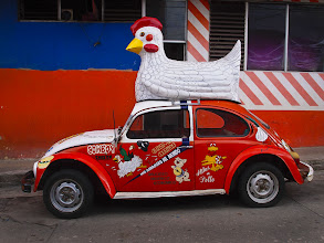 "Photo: ""Cowboy Chicken"" ~ Palenque, Mexico © 2011 Skip Hunt :: kaleidoscopeofcolor.com"