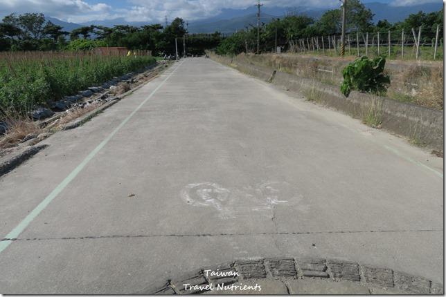 台東山海鐵馬道 台東環市自行車道 (125)