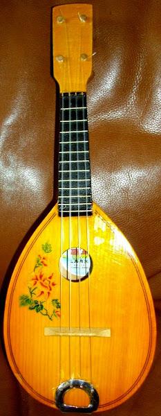 Lark Teardrop (may be a Mandolin?)