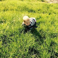 spelen in het gemaaide gras
