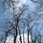 Белогорье природа 047.jpg