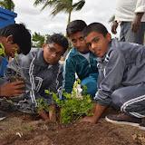 Gurukul Green Revolution (6).jpg