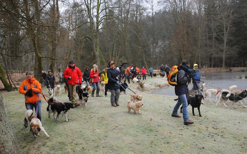 20140101 Neujahrsspaziergang im Waldnaabtal - DSC_9892.JPG