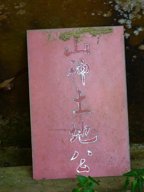Taipei. Si Shou shan, en plein coeur de Taipei. Accès par un chemin bien plus sauvage. - P1240819.JPG