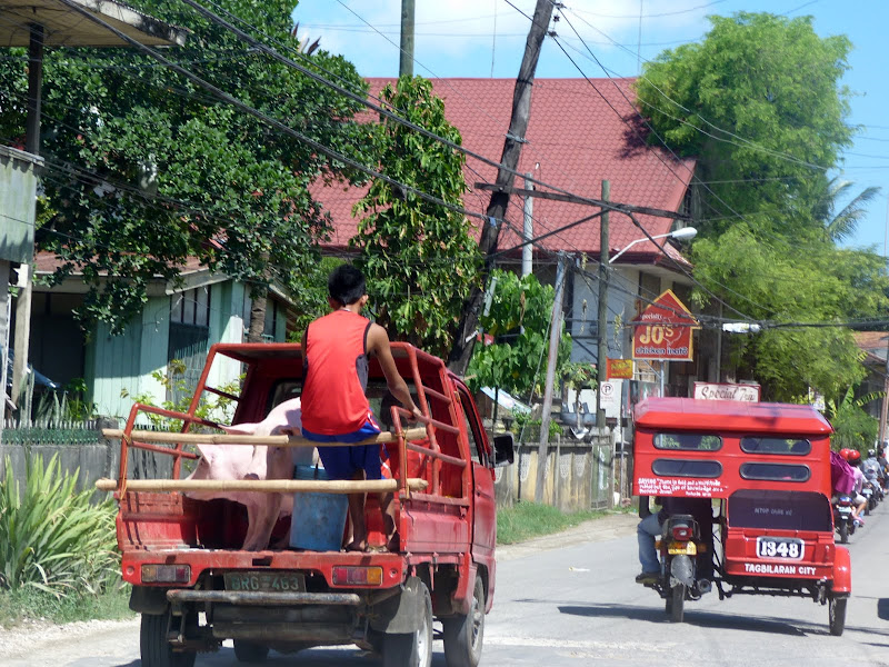 Bohol et Panglao - philippines1%2B1267.JPG