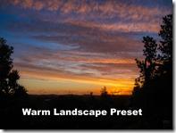 PA090050aur warm landscape