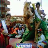 VenezuelaCarnavalPuntoFijo2013