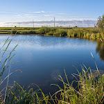 20140621_Fishing_Shpaniv_001.jpg