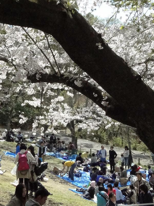 2014 Japan - Dag 6 - roosje-DSC01546-0011.JPG
