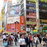 street crossing in Akihabara in Akihabara, Tokyo, Japan