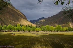 Darkut village, Yasin Valley.