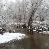 Swider River 2015