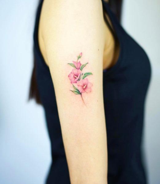 estas_lindas_flores_cor_de_rosa