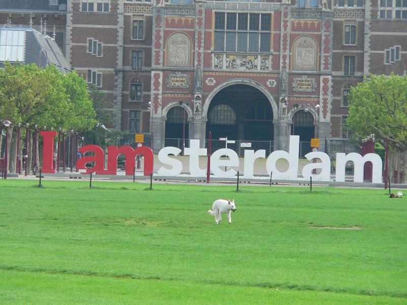 Amsterdam! - P1190058.JPG