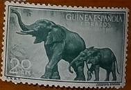 timbre Guinée espagnole 001