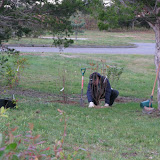 Hammo Planting - Shannon Schiesser - IMG_4877.JPG