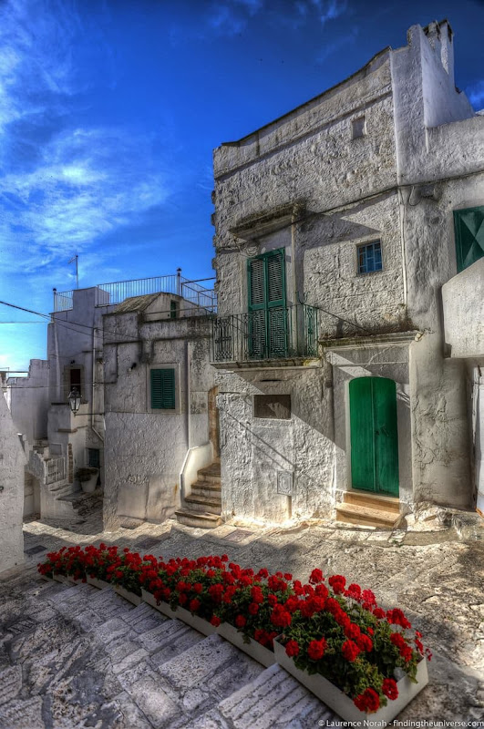 Red roses white city ostuni - scaled