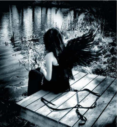 Dark Andel, Angels 5