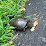Joan Martin's profile photo