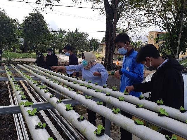 Pemantapan USP, Siswa Pertanian Terima Banyak Ilmu