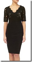 Adriana Papell lace bodice dress
