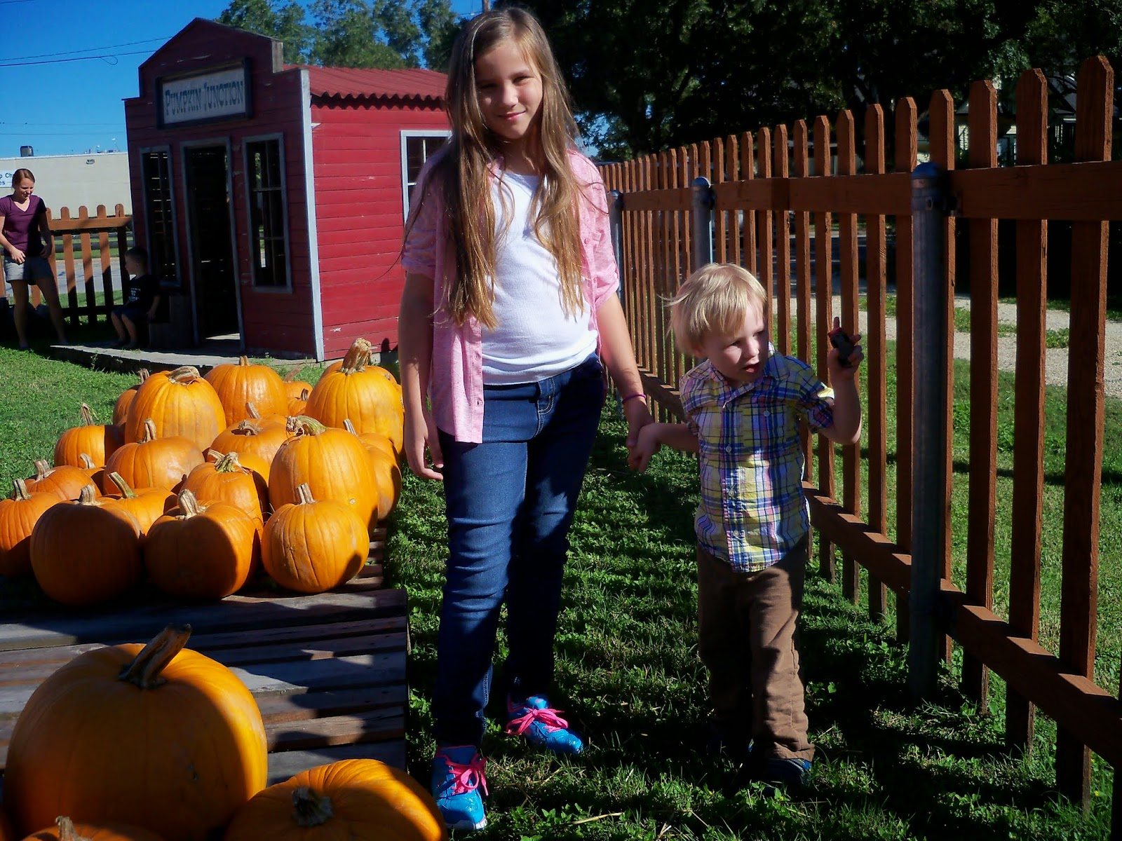 Pumpkin Patch 2014 - 116_4462.JPG
