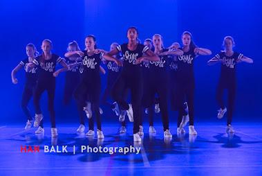 Han Balk Voorster Dansdag 2016-4566-2.jpg