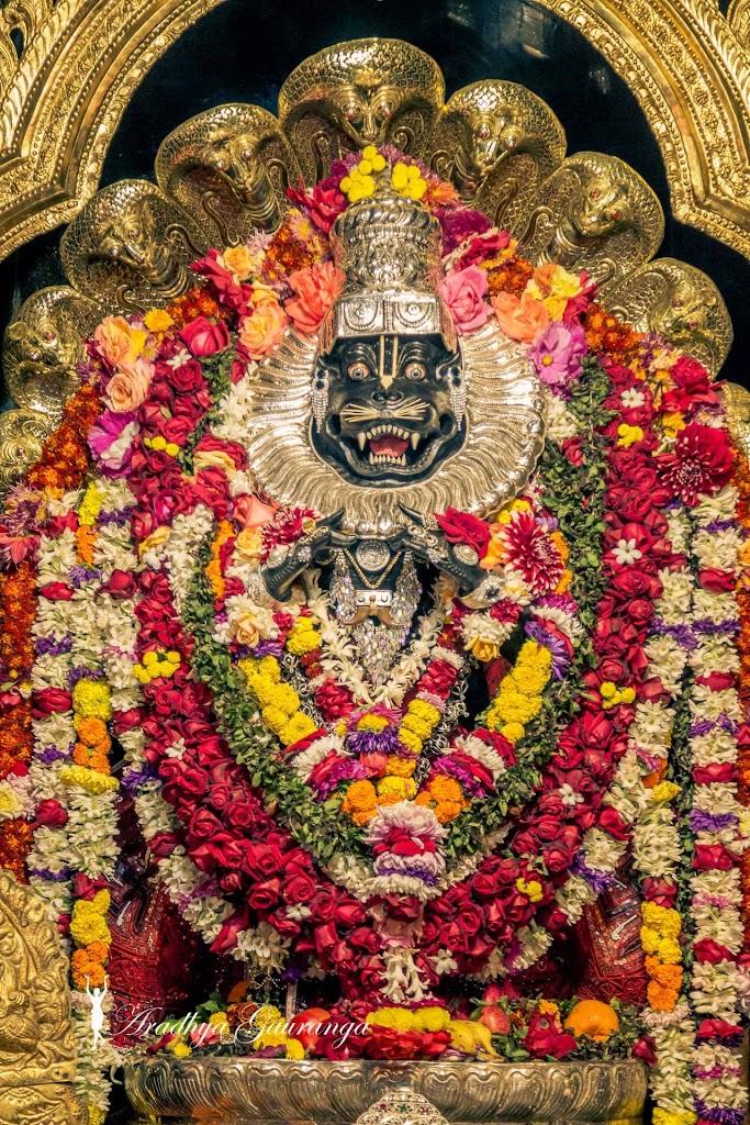 ISKCON Mayapur Deity Darshan 14 Jan 2017 (4)