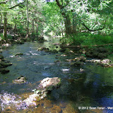 040412HillsboroughRiverStatePark