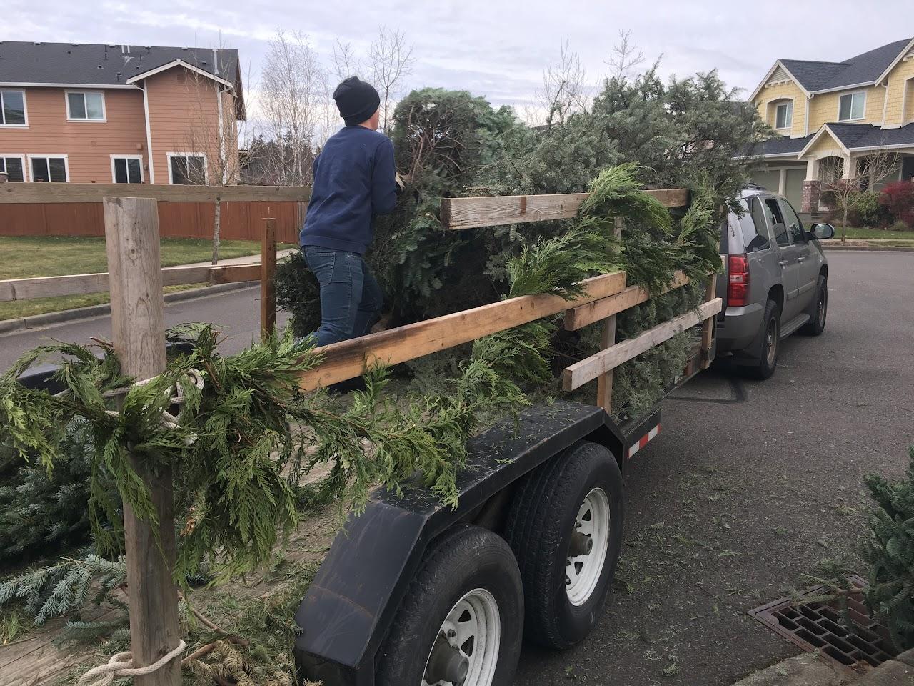 Christmas Tree Pickup - January 2017 - IMG_7001.JPG