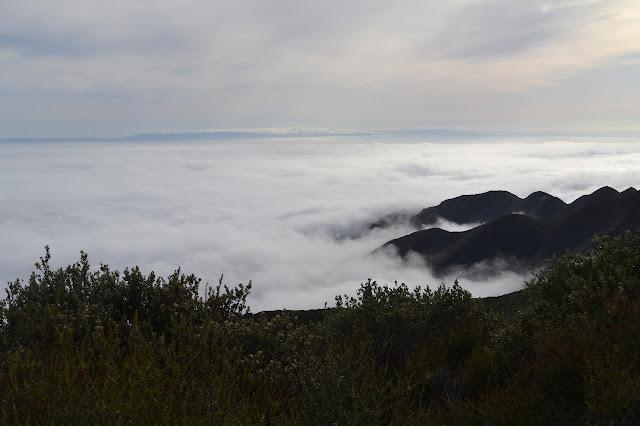 islands in fog bank